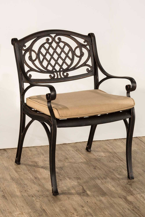 Esterton Indoor/Outdoor Arm Chair - Black/Gold